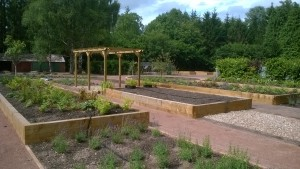 Gardens to raised beds